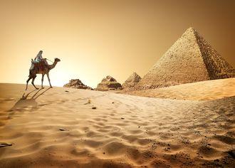 Beduín s velbloudem s pyramidami II
