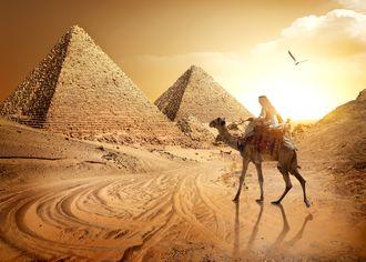 Beduín na ťave s Cheopsovou pyramídou