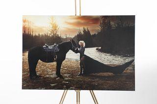Obrázek kompozice s koněm.jpg