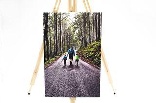 Obrázek na cestě.jpg