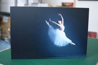 Obrázek Tanečníce v letu